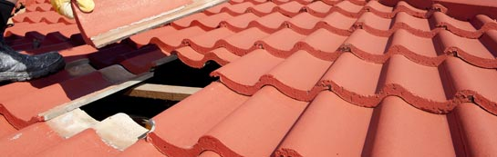 compare Shoresdean roof repair quotes